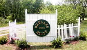 Breland bluff home for Breland homes website
